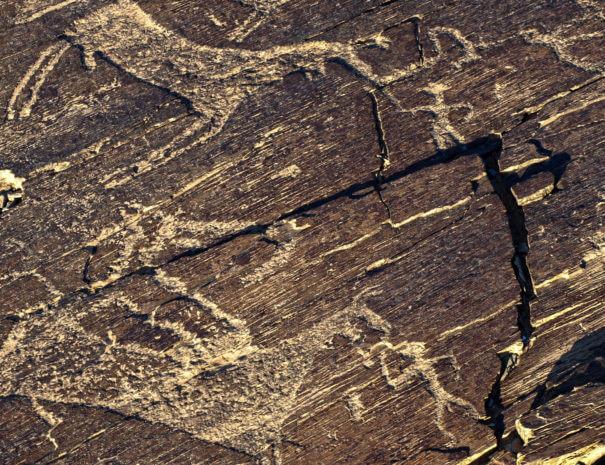 Mongolei_Gobi_Petroglyphen_1