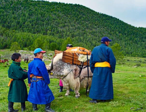 Mongolei_Yak_Kinder
